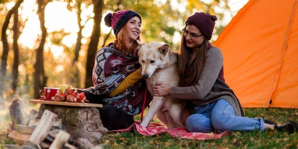 Viajar a un camping en Huesca con mascotas